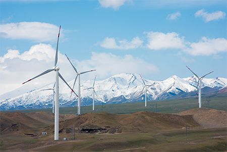 """践行""""碳中和"""" 世界环境日里邀您领略威图的""""绿色""""秘籍"""